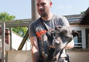 Tennessee ASPCA 4