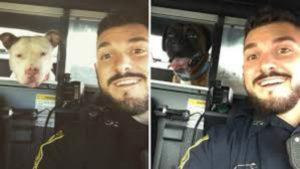 cop posts selfies on rescued dog