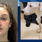 Woman starved adopted dog