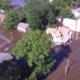 Livestock killed in flood waters