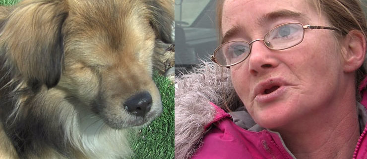 Woman pleads guilty to charges for abuse of dog