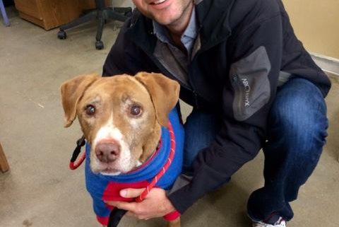 Handsome man adopts senior dog