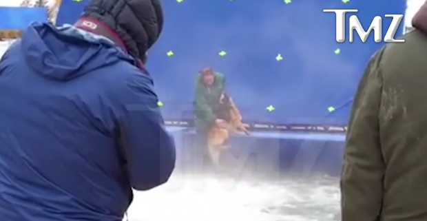 Scared dog forced into churning water