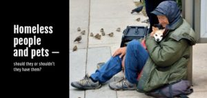 homeless-impact-banner-720x340