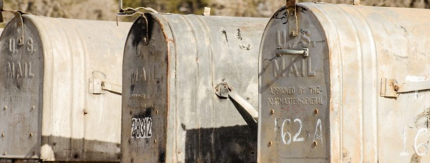 Puppy locked in a mailbox
