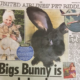 Giant Rabbit has died