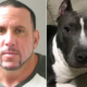 Suspect in attack on Veteran - Cohen and missing dog Mala