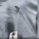 Shark mangled during cruel video