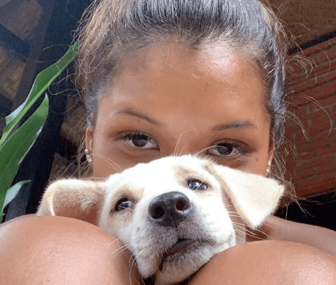 Puppy therapy at Bali hostel