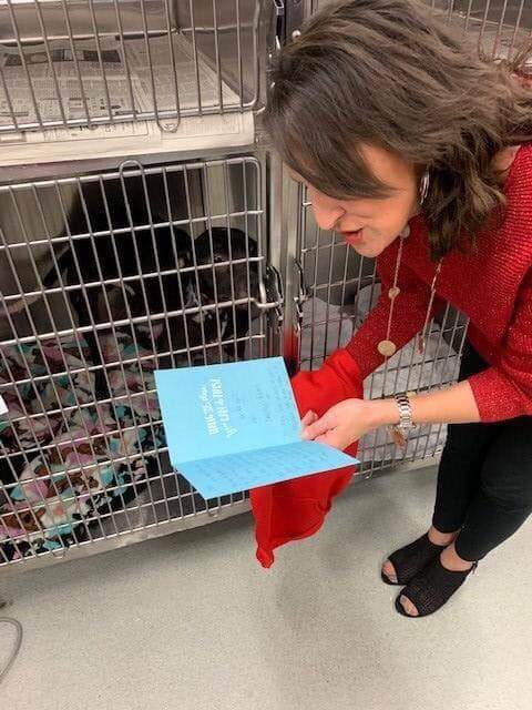 Charlie, the dog found starving in Buffalo garbage tote put