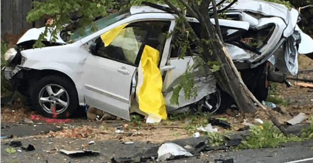 Homeless woman and dog killed by drunk driver