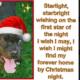 Senior dog has spent over 700 days at shelter