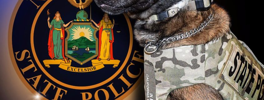 New York State Police K9 Will killed while performing his