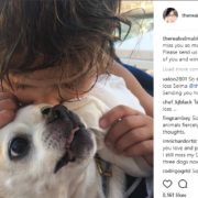 Dog belonging to Selma Blair has died