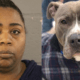 Woman charged for abandoning dog in a trash bag