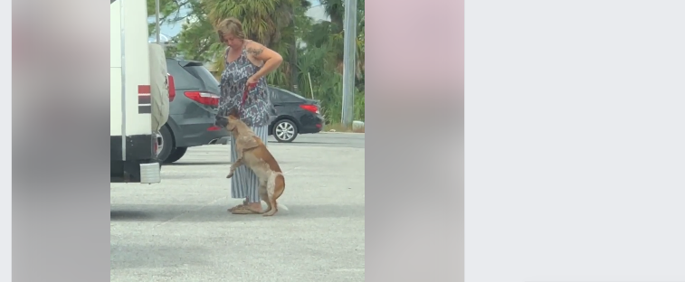 Woman arrested for choking dog