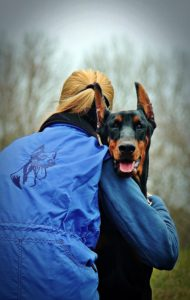 Anguish over animal control tech's suicide