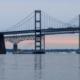 Animal cruelty investigation on Bay Bridge