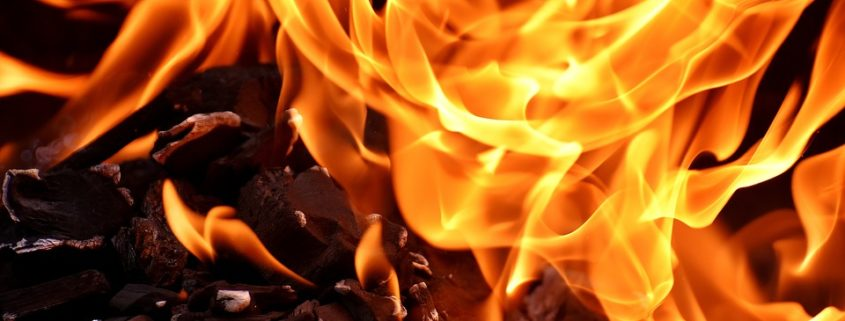 Man rushed into burning house to save dogs