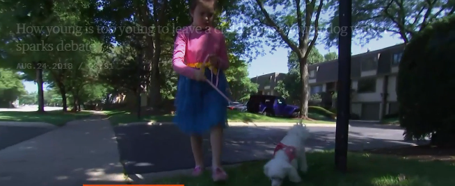 police called after child allowed to walk family dog