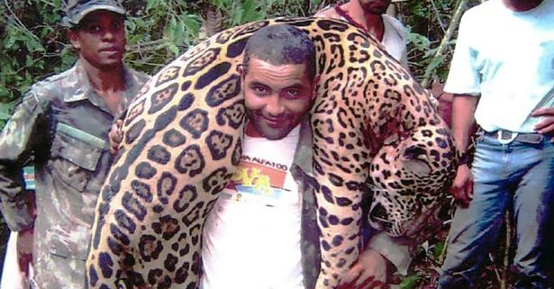 Dentist accused of illegally hunting jaguar