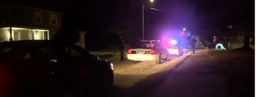 Detroit woman killed after being mauled by dog