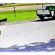 Video shows dog chasing after truck