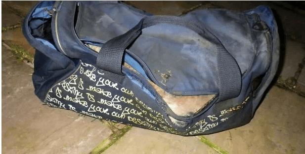 Dead dog found in gym bag