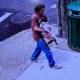 Dog thrown away