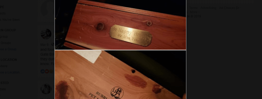 Dog's ashes found