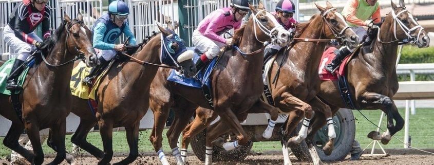 Horse dead at Santa Anita park