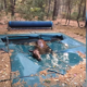 horse found tangled in pool cover