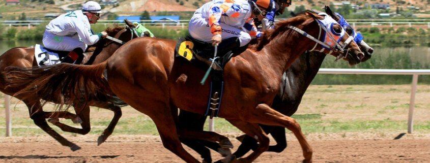 Another horse dead at Santa Anita Park