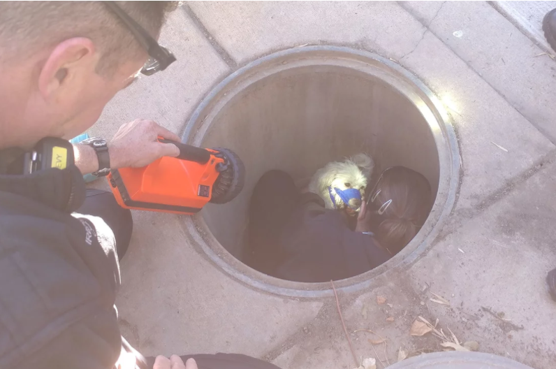 falling into the manhole Pedestrian falls into manhole after downtown  pedestrian falls into manhole after downtown edmonton explosion  a woman was rescued after falling into a manhole.