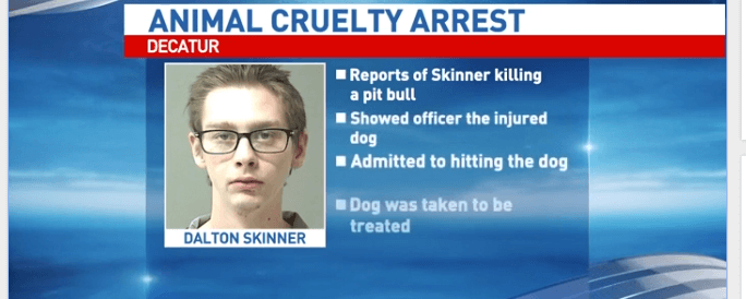 Man arrested - bloodied dog found in bathtub