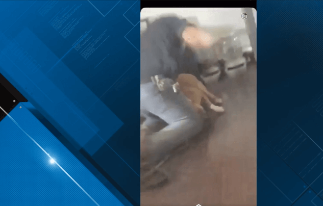 Man who beat dog with belt and fists found guilty of animal torture