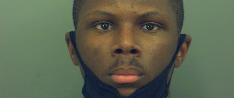 Man arrested after video shows him kicking dog