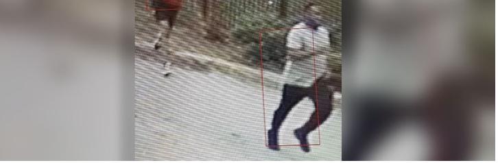 Man allegedly shot puppy in child's arms