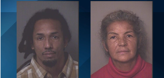 Mother and son arrested after 28 neglected dogs found in living hell
