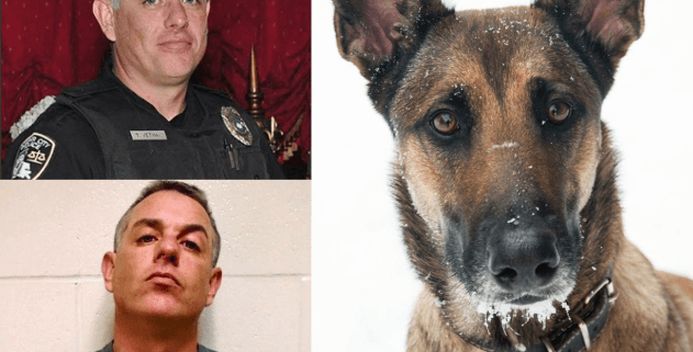 Officer accused of dog sex abuse