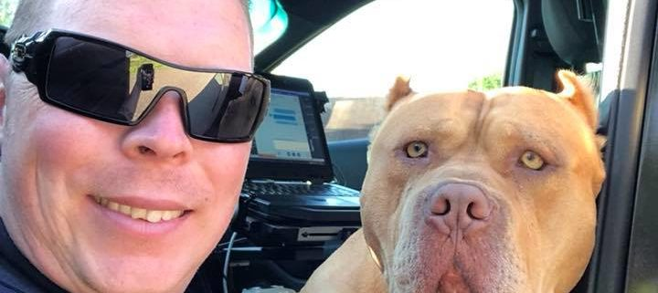 police encounter with vicious dog