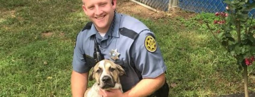 Police looking for home for puppy after death of owner