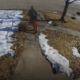 Dog chased after porch pirate