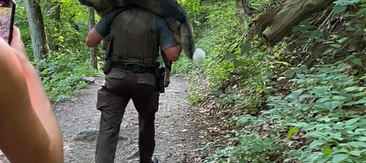 Heroic park ranger