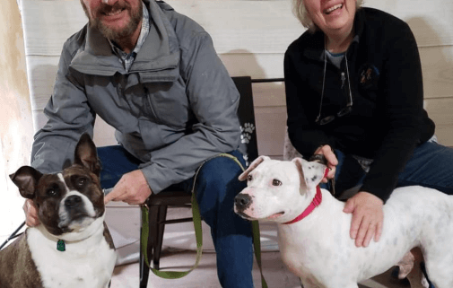Rescue dog finally gets a home
