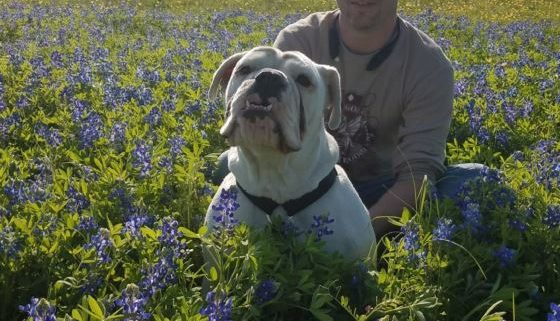 Rescuer's dog died in Harvey Floods