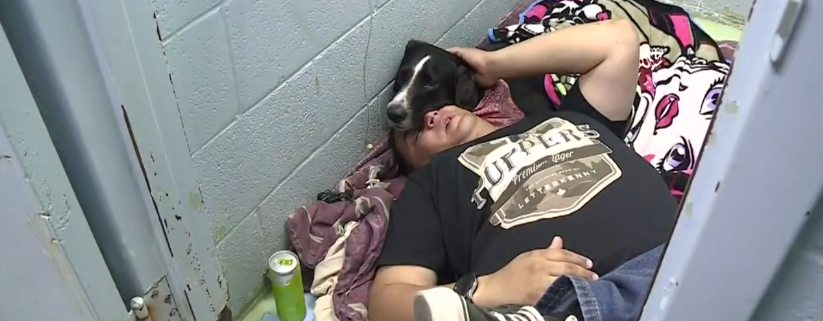 Stolen dog reunited with his owner