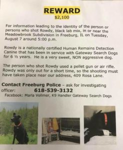 search dog shot and killed