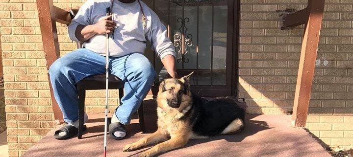 Seeing eye dog returned to blind man