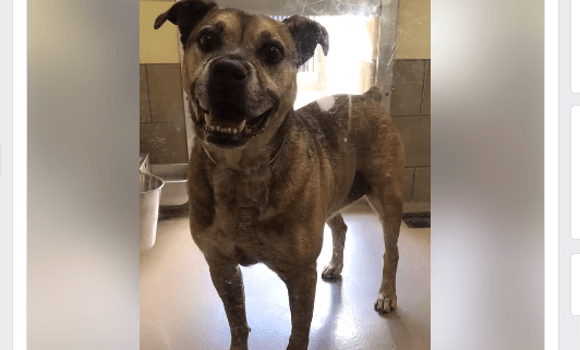 Family didn't come for senior boy with microchip